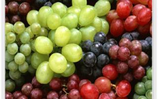 Виноград и его уникальные полезные свойства