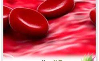 10 действенных рецептов повысить гемоглобин в крови