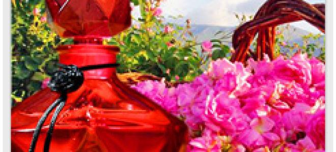 Розовое масло и его удивительные свойства
