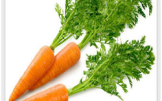 Морковь способна защитить от свободных радикалов и не только! Часть1