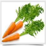 Полезные-свойства-моркови