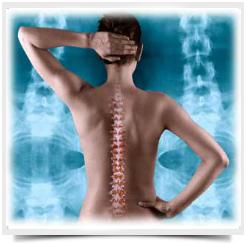 Укрепление-мышц-позвоночника
